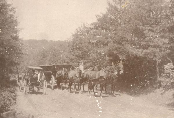 A wagon team bringing a load of charcoal on the road from Greenwood Furnace to McAlevy's Fort, about 1900.