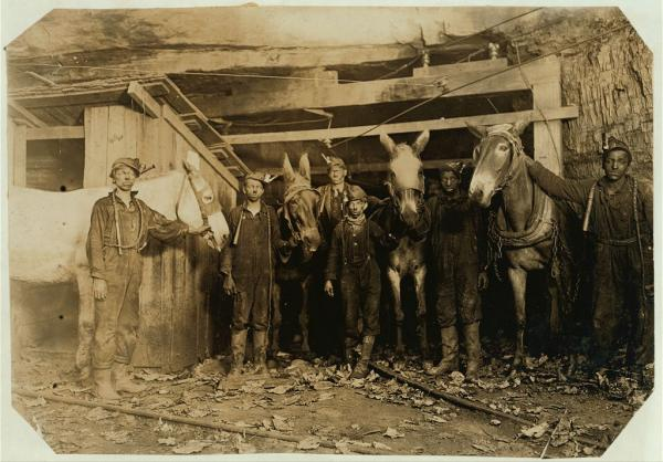 Boys with their mules, standing at the entrance of the mine.
