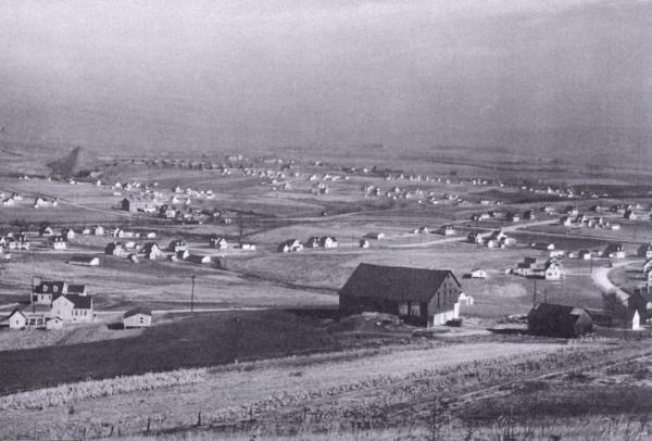 Black and white photograph with a wide view of the houses in the Westmoreland Homesteads.