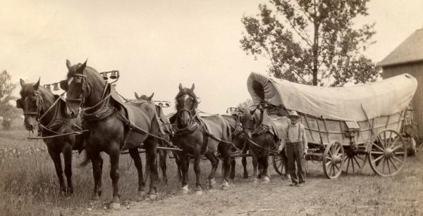 Conestoga Wagon with horse team and farmer