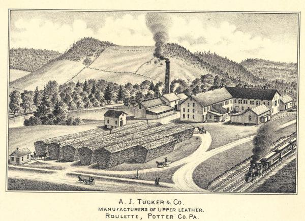 Tucker, A.J. and Co. (view of tannery)