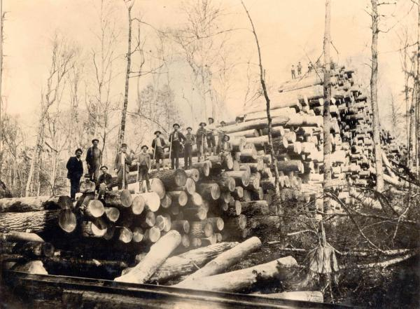 "Shown here is a ""skidway"" of more than 3000 logs next to railroad tracks. Men stand along the tops of the pile that stretches across the landscape."