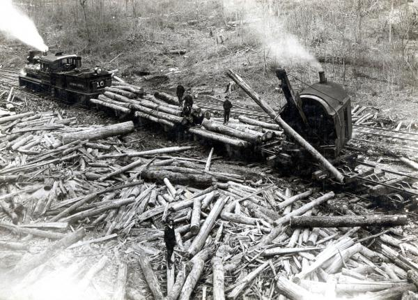 A logging machine lifts a giant log that will be placed on the flat bed area of a logging train. Workers are standing on the logs that are already loaded and there are logs dispersed over the ground in this photo.