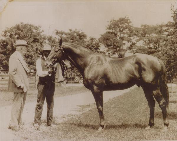 One man holds the rein of a horse, while another man stands beside the horse.