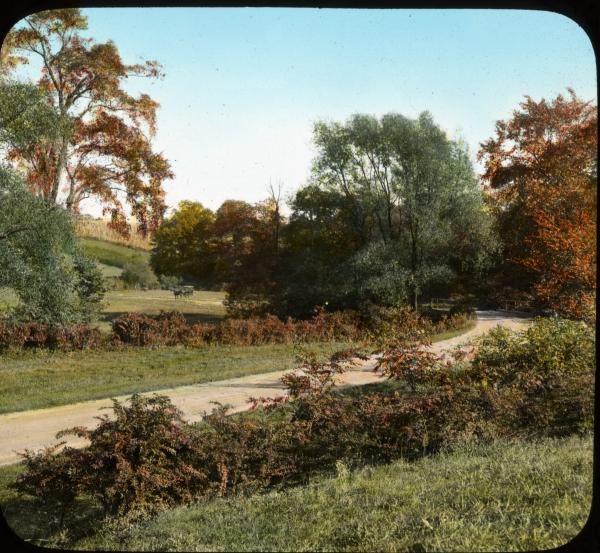 A color image of Harrisburg Parkway, a path with grass, bushes, and trees to either side.