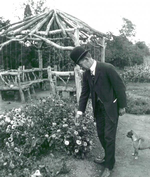 A man in a suit stands in a garden