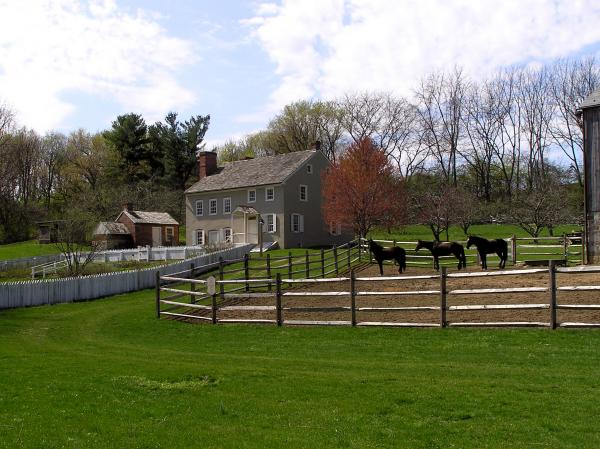 Exterior of home and grounds. Livestock and fencing in foreground.