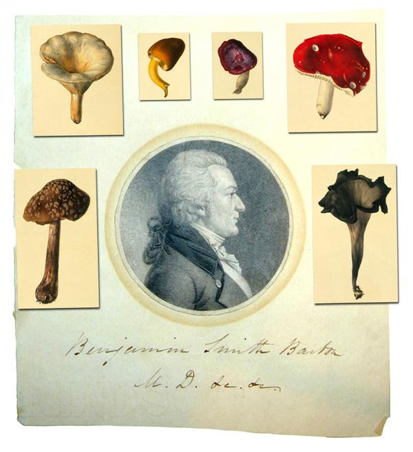 A portrait of Benjamin Smith Barton and some of his botanical images.