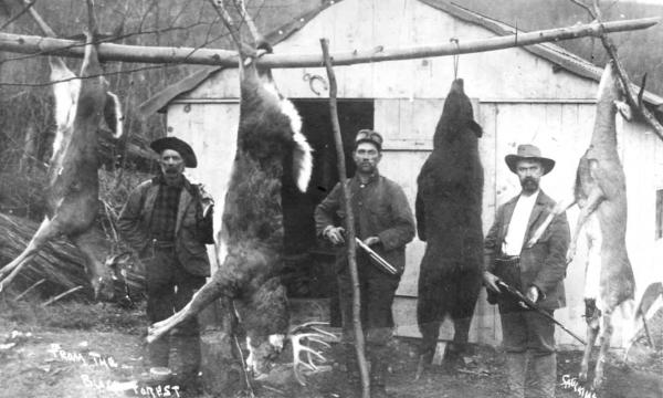 Hunters with guns pose with their dead deer and a dead bear, which hang from a large branch of a tree that has been made into a rack.