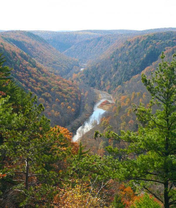 Photograph of Allegheny Mountains