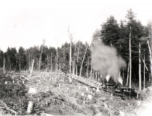 Climax logging locomotive