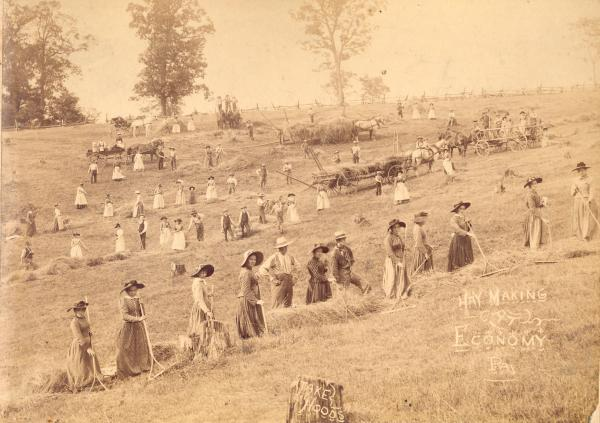 The communal Harmony Society was successful in many industrial ventures, but the foundation of its economy was agriculture. This late 19th century photograph shows Harmonist at work in the fields of their community of Economy
