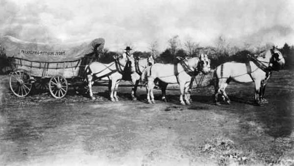 Six white horses are hitched to a covered wagon with an advertising sign hanging from it.