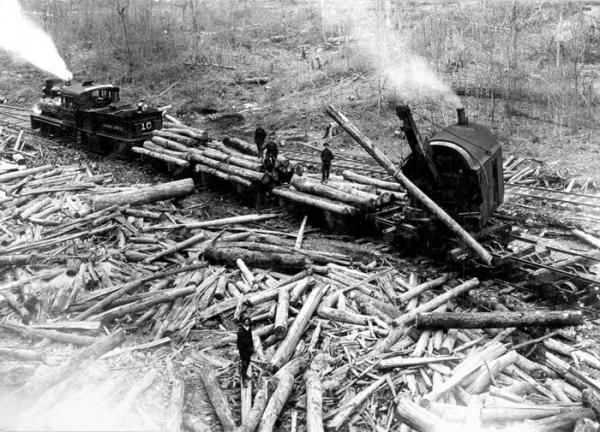 Train  pulling workers and logs.