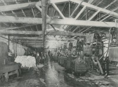 Workers inside of a tannery, pose for a photgraph. Hides can be seen as well as equipment.