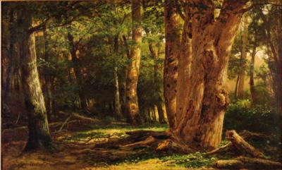 Skylight streams through the forest trees in this beautiful oil on canvas.
