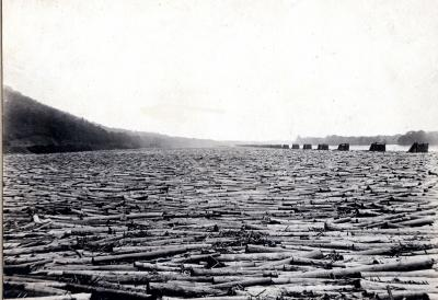 The enormous Susquehanna Boom extended for miles along the west branch of the Susquehanna River, near Williamsport, Pennsylvania. It was capable of holding close to a million logs at a time.