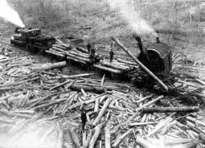 Transporting logs off the mountains often involved the use of trains. Paths cut into the mountains, and pollution caused by the trains themselves, added to the devastation of the forest.