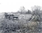 Romas Brothers Farm, Edgemont, PA 1935