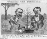 "Cartoon showing Benjamin Harrison planting a chestnut tree and Postmaster General John Wanamaker watching him. Wanamaker asks: ""Your excellency, how do you like Pennsylvania?"" Benjamin Harrison replies: ""A little cooler weather would suit tree planting better"""