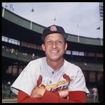 Color photo of Musial