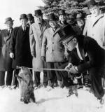 A snow covered ground and a group of men wearing winter coats and top hats, watch as a groundhog arises from his hole in the ground.