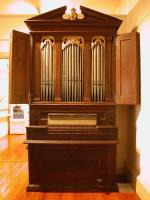 Color image of the organ.