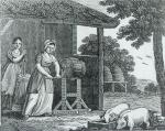 Woodcut of woman in Progress of the Dairy (1819) Image of a woman at a churn.