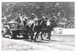 Horses pulling a truck for spectators'